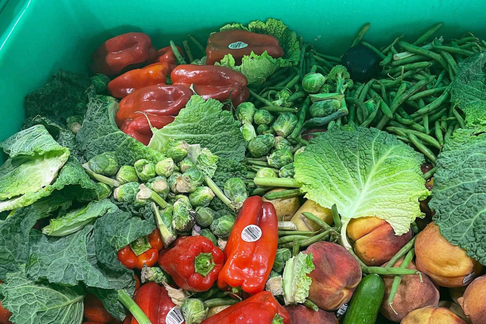 food-waste_mobile